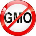 images_no-GMO